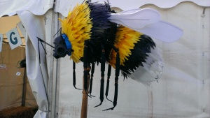 This bumble bee was made from rubbish! There were also lots of stalls promoting traditional crafts, and for local conservation groups.