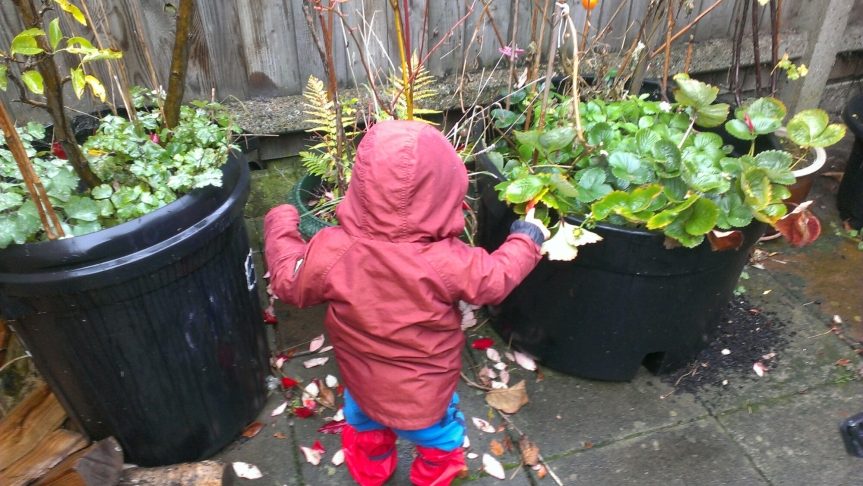 Rainy Days with a Toddler: Top Tips for Getting Outside