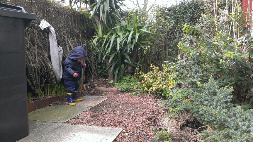 Engaging Toddlers with Nature: 16 Months
